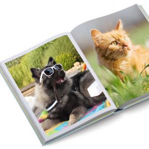 Ein Fotobuch für das Haustier erstellen
