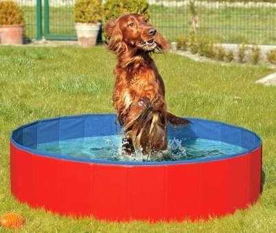 Karlie DOGGY POOL der Swimmingpool für Hunde - Rot-Blau - 80 cm