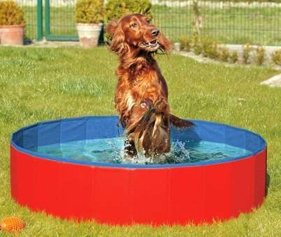 Karlie DOGGY POOL der Swimmingpool für Hunde - Rot-Blau - 160 cm