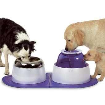 DOGIT Futter- und Wasserstation für Hunde
