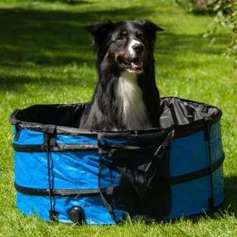 PROCYON klappbarer Hundepool