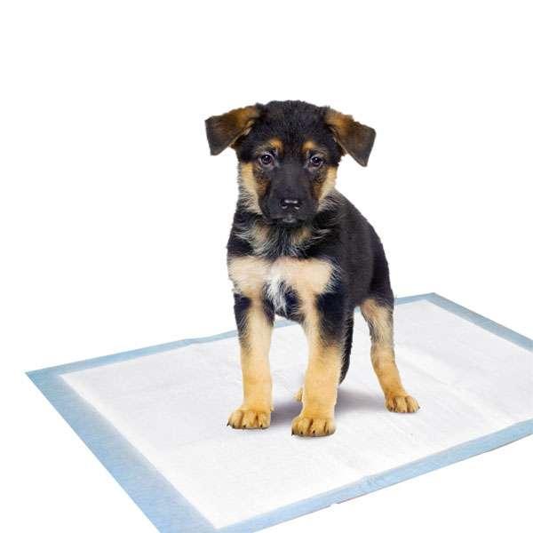 karlie flamingo puppy pads trainingsmatten welpen. Black Bedroom Furniture Sets. Home Design Ideas