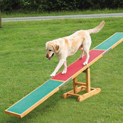 trixie agility wippe agility training. Black Bedroom Furniture Sets. Home Design Ideas