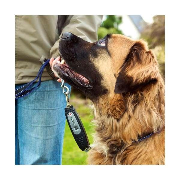 karlie dog e walk dogtrainer erziehungs hilfen. Black Bedroom Furniture Sets. Home Design Ideas